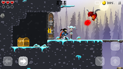 Screenshot from Sword Of Xolan