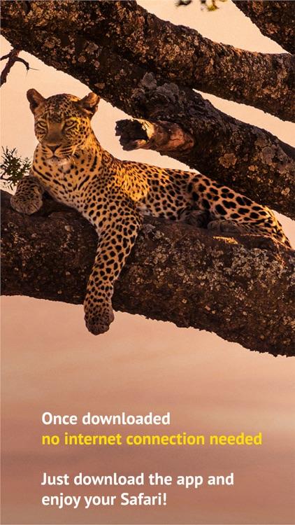 The Golden Safari Guide screenshot-5