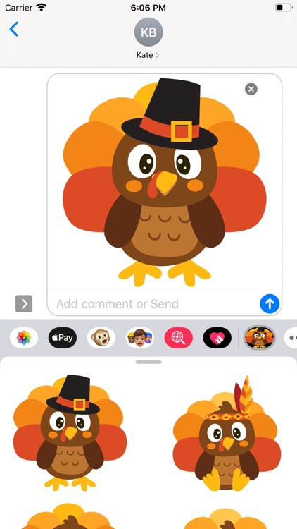 Turkey Time Stickers screenshot-4