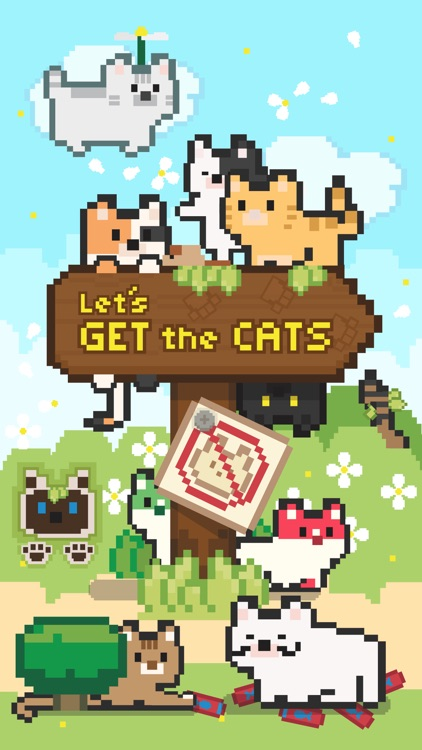 Let's Get the Cats: Cute Cats