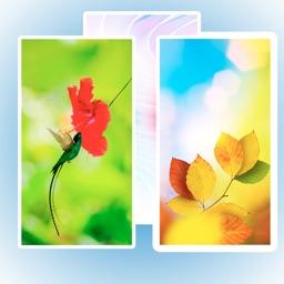 HD Wallpaper & Background Pro