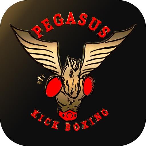 Pegasus Studio