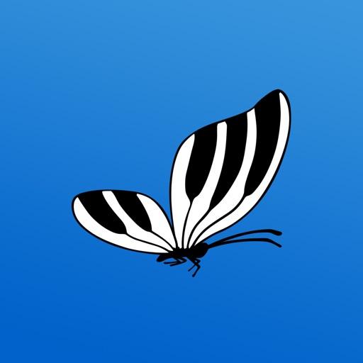 Pianofly FM Synth