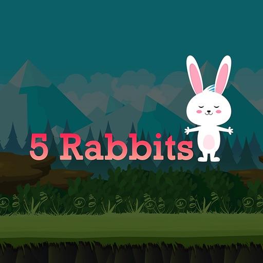 5 Rabbits