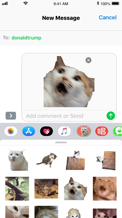Cat Meme Stickers screenshot-3