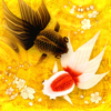 Wa Kingyo - 和金魚 -