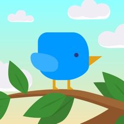 I'm a Birdie