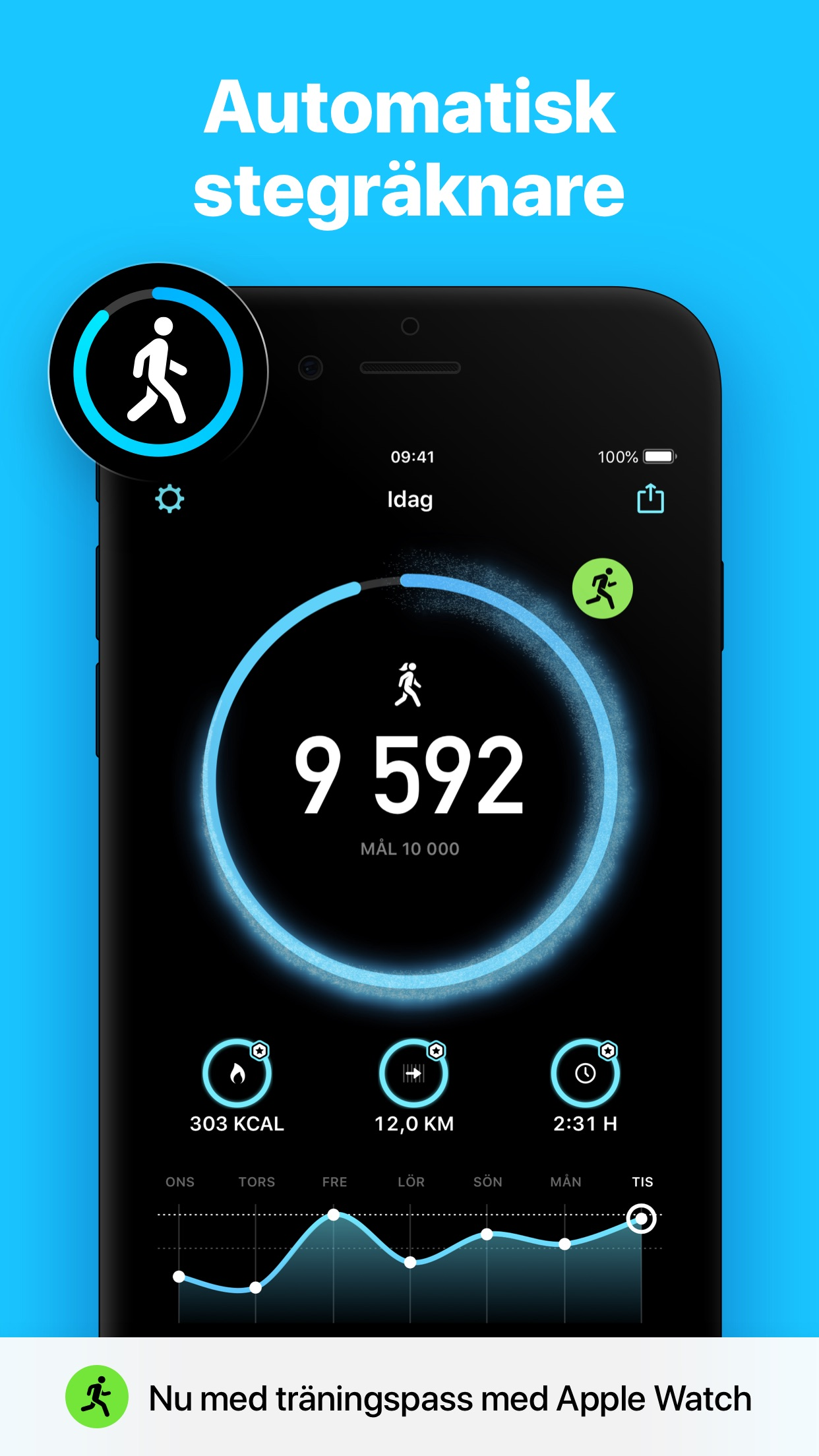 StepsApp Stegräknare Screenshot
