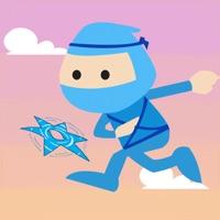 Codes for Mr. Ninja Star Hack