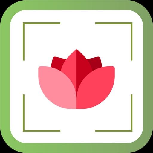 PlantDetect - Plant Identifier