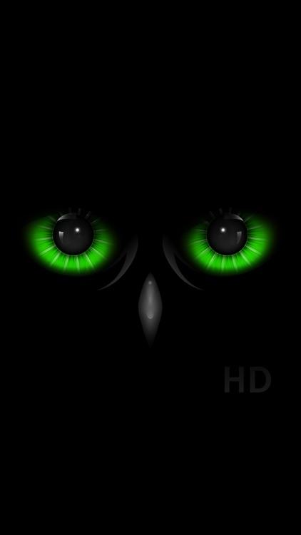 Night Eyes - Low Light Camera screenshot-3