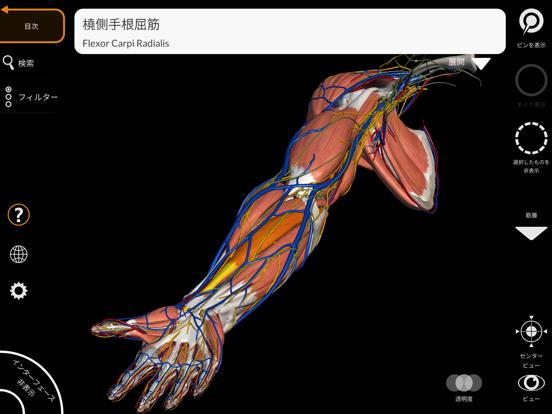 解剖学 - 3Dアトラスのおすすめ画像8
