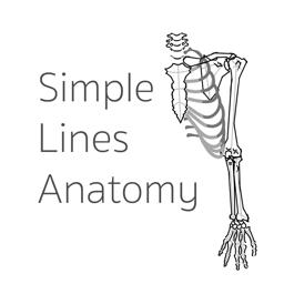 Ícone do app Simple Lines Anatomy