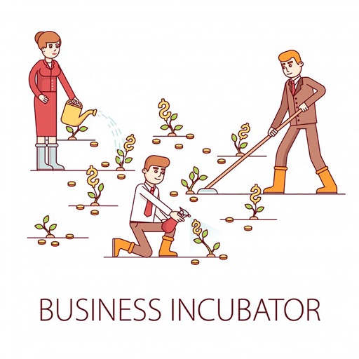 BusinessIncubatorMNN