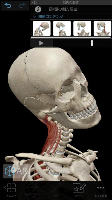 筋肉とキネシオロジー ScreenShot7