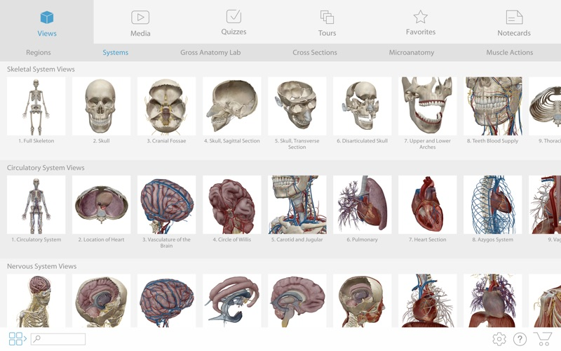 Human Anatomy Atlas 2019 screenshot 3