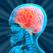 Brain Games: Training Quiz
