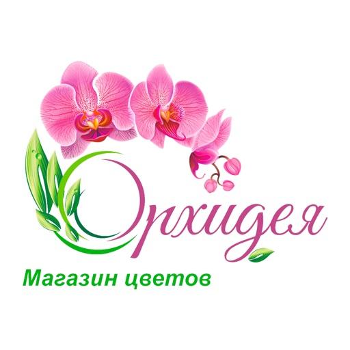 Орхидея   Усть-Каменогорск