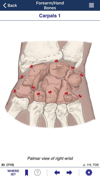 AnatomyMapp screenshot-3