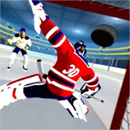 Hockey Games 3D