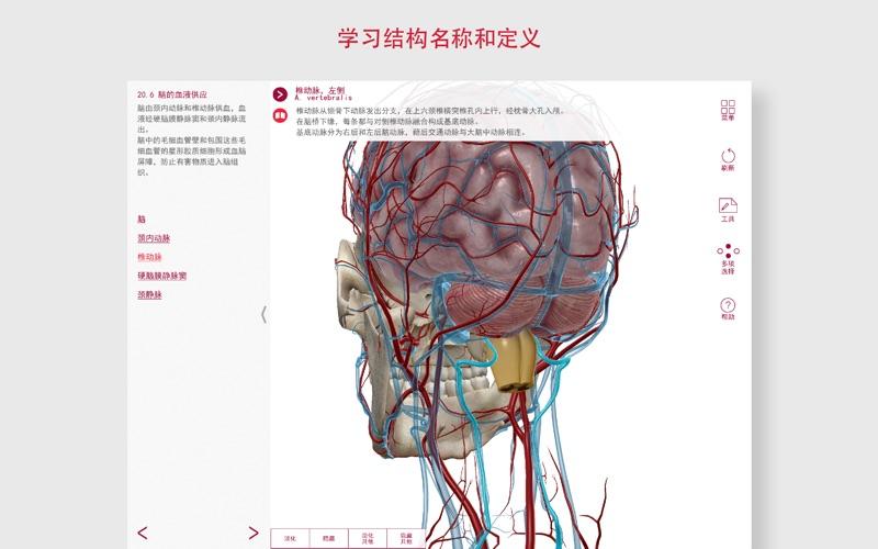 解剖和生理学 for Mac