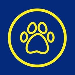 Dojer: The Pet Marketplace