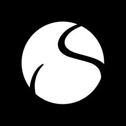 Solidsport Report