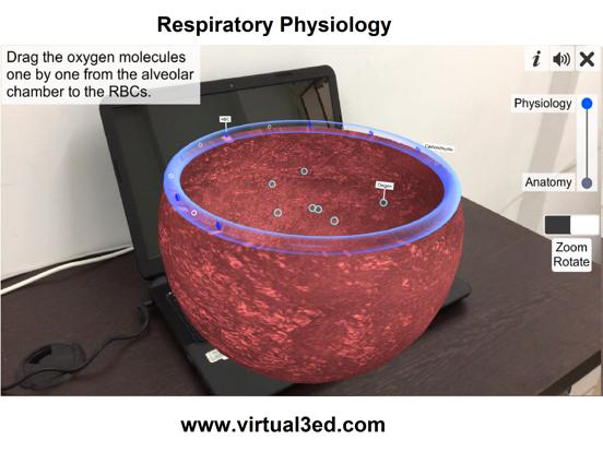 AR Respiratory system physiolo screenshot 13