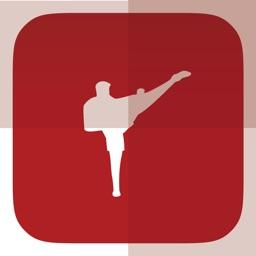 MMA Ultimate Fighting