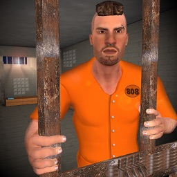 Prisoner Jail Break: Chapters
