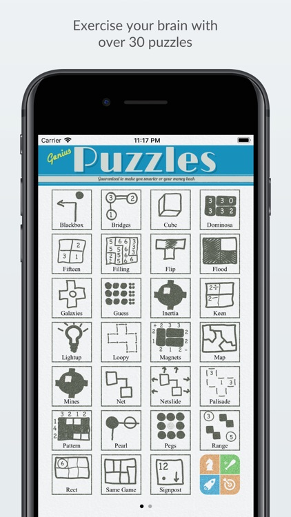 Genius Puzzles