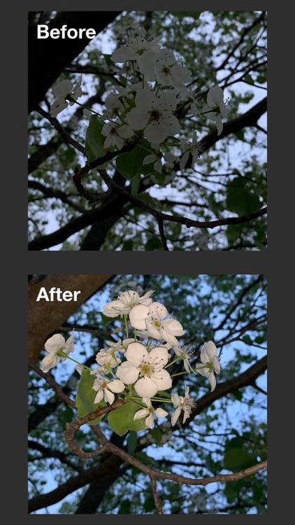 Lit Cam : Light + Camera screenshot-3