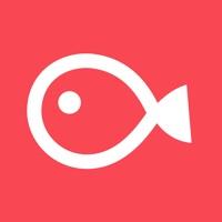 VLLO - Video editing app
