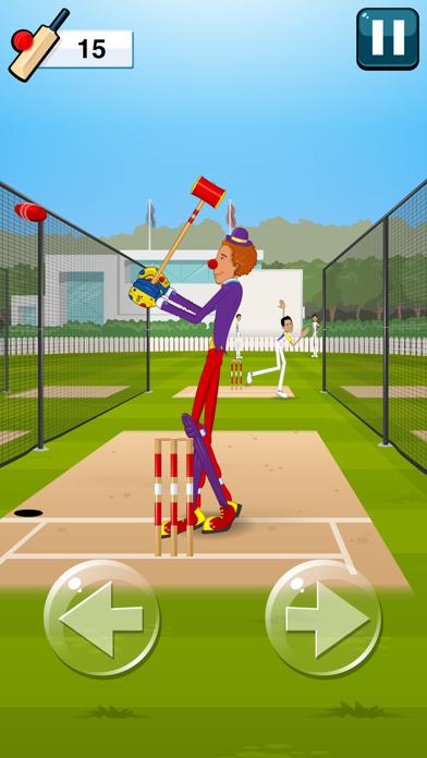 Stick Cricket 2-5
