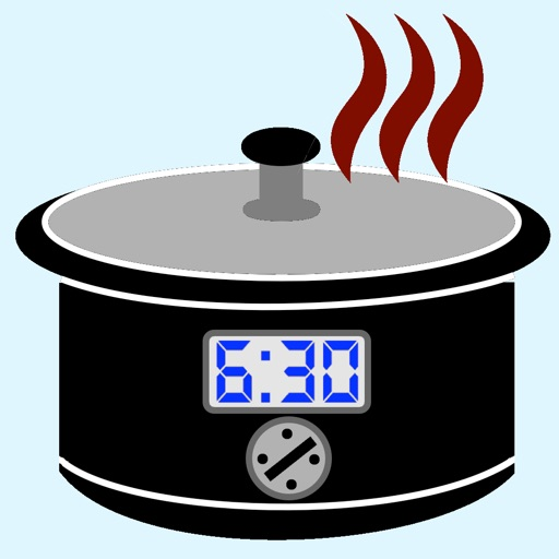Slow Cooker Temperature& Timer