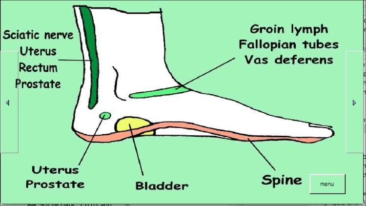 Treat Your Feet - Reflexology screenshot-4