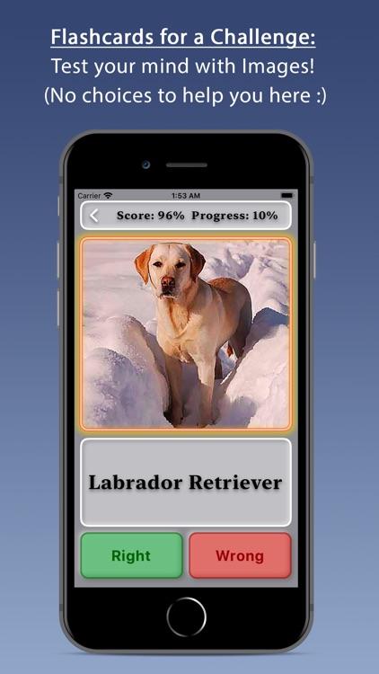 Dogs screenshot-2