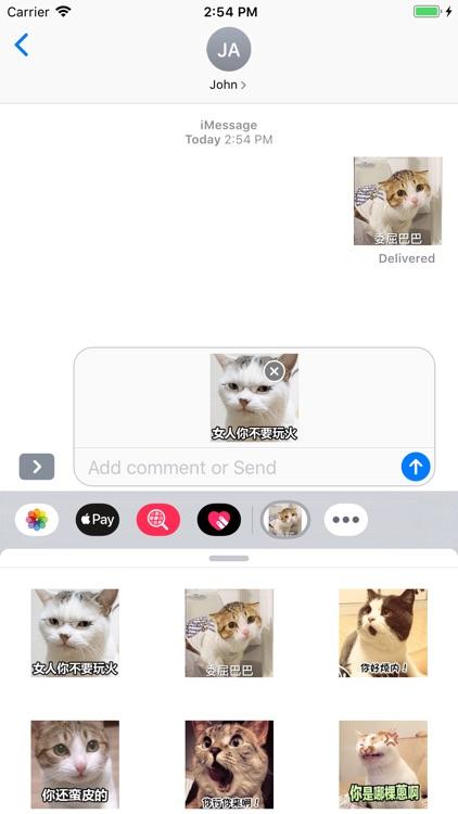 ViciousCat screenshot-3