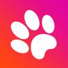 Igor Fuchkin - Игра для кошек и котов обложка