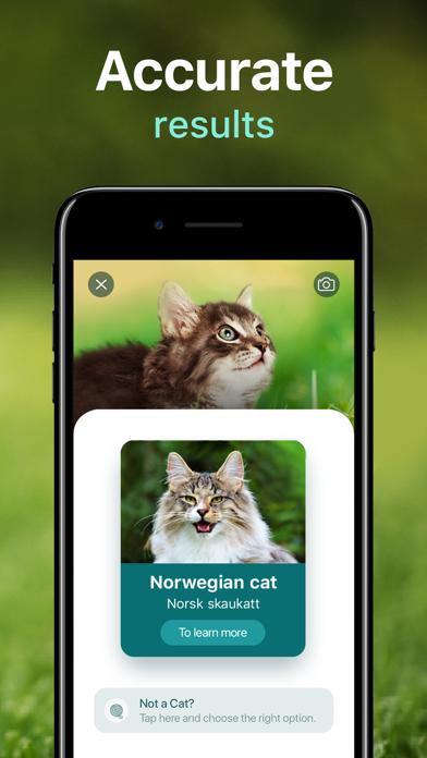 NatureID: Plant Identifiсation Screenshot