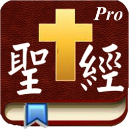 Handy Bible Chinese Pro 隨手讀聖經