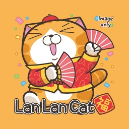 Lan Lan Cat Pig Year (Image)
