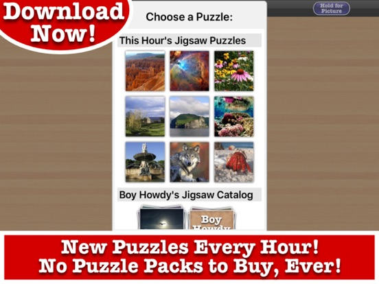 Totally Fun Jigsaw Puzzles – Boy Howdy Technology