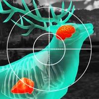 Wild Hunt: Hunting Simulator Hack Online Generator  img