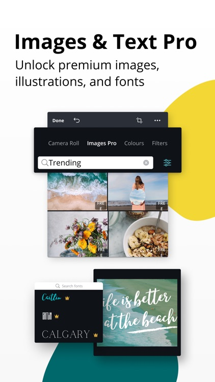Canva - Graphic Design Creator screenshot-8