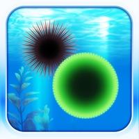 Codes for Amazing Aquarium Hack