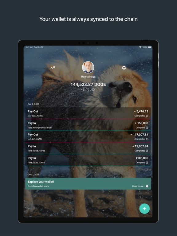 iPad Image of Dogecoin Wallet by Freewallet
