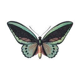 Amazing Butterfly Stickers