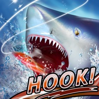 Codes for Fishing Rivals : Hook & Catch Hack