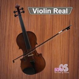 Violin Real